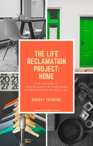 The life reclamationproject_home copyright