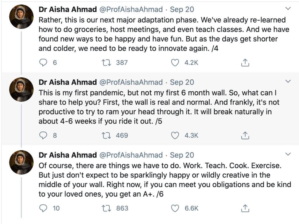screenshot of twitter Dr Ahmad